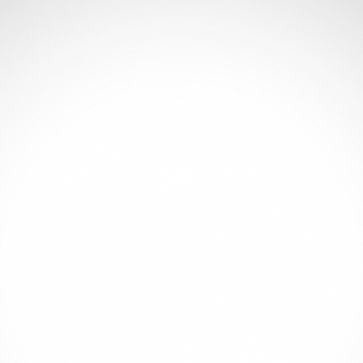 Horse 04303