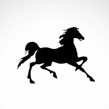 Horse 04308