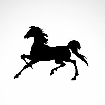Horse 04309