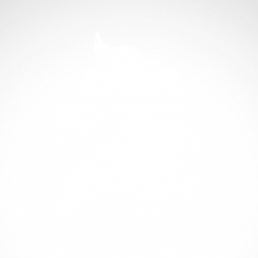 Horse 04315