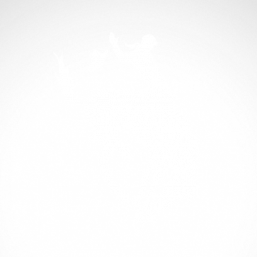 Horse 04321