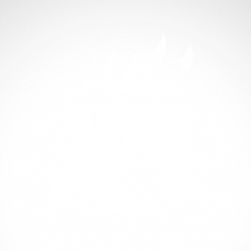 Horse 04322