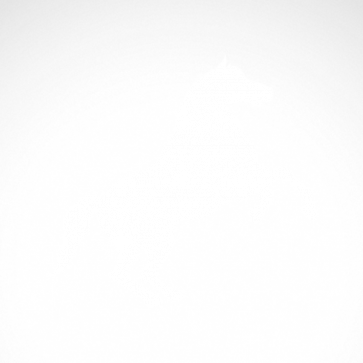Horse 04334