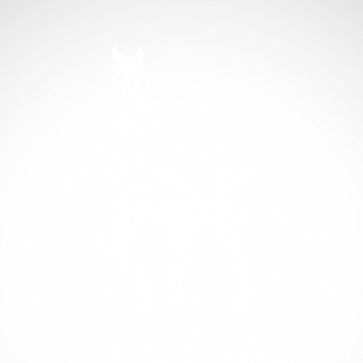 Horse 04337
