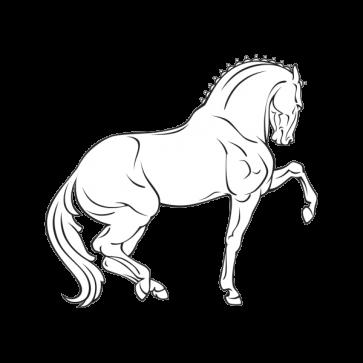 Royal Horse 04352