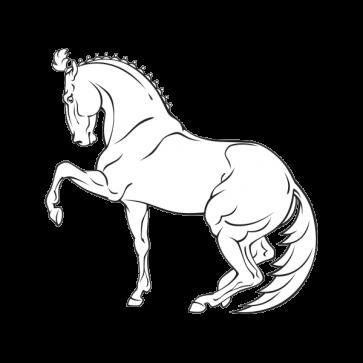 Royal Horse 04353