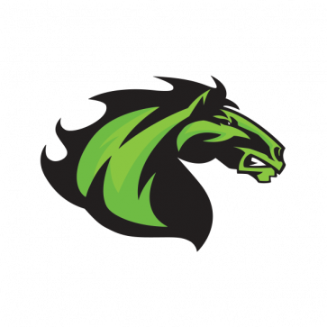 Power Green Horse 04358