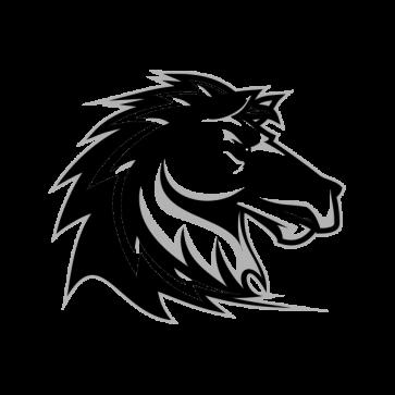 Power Horse 04372