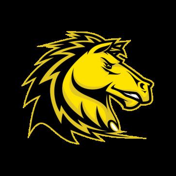 Power Yellow Horse 04376