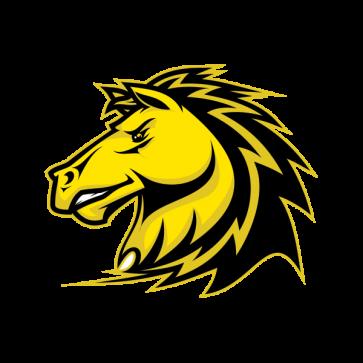 Power Yellow Horse 04377