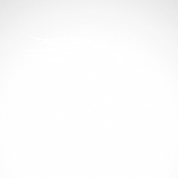 Pair Of Flames 04511