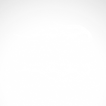 Pair Of Flames 04545