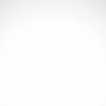 Pair Of Flames 04569