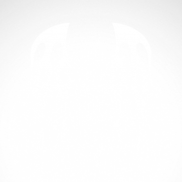 Pair Of Flames 04571