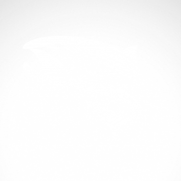 Salmon 05901