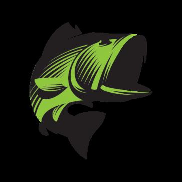 Bass Fish 05905