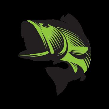 Bass Fish 05906