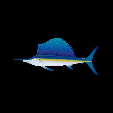 Sailfish 05927
