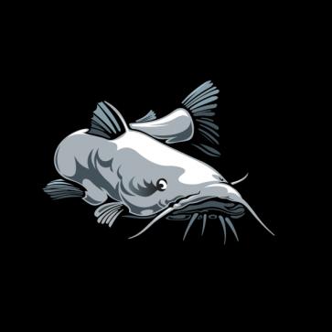 Catfish 05933