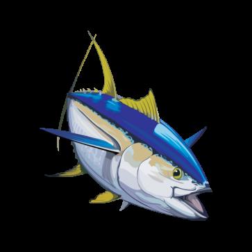 Yellowfin Tuna 05953