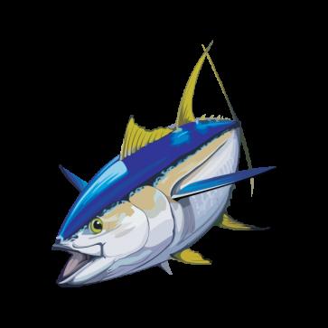Yellowfin Tuna 05954