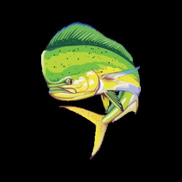 Dorado Dolphin Fishing 05956