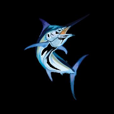 Sailfish Marlin 05959