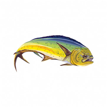 Dorado Dolphin Fishing 06004