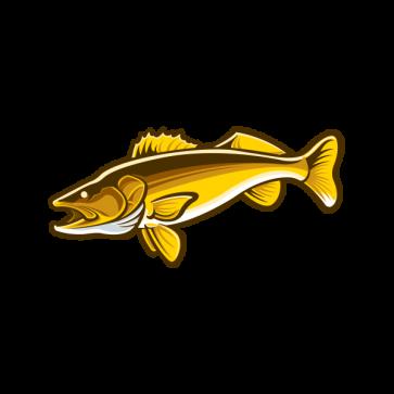 Salmon 06013
