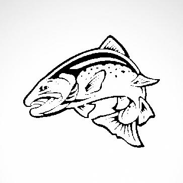 Salmon Fish 06107