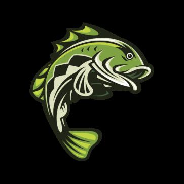 Bass Fish 06119