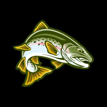 Salmon Fish 06121
