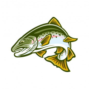 Salmon Fish 06122