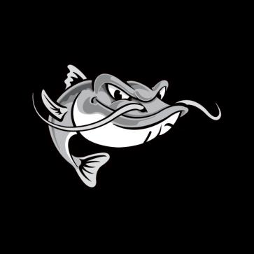 Catfish Fishing 06136