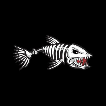 Fish Skeleton Bones 06158