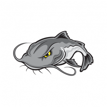Catfish Fishing 06177