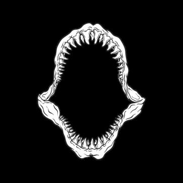Megalodon- Great White Shark's Jaws 06342