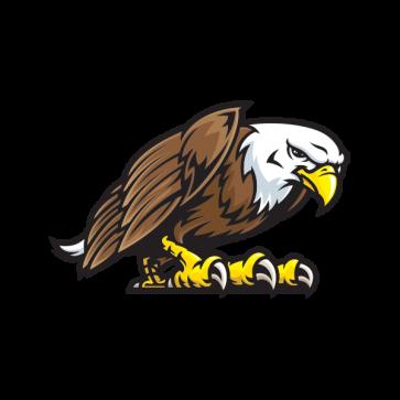 Bald Eagle 07114