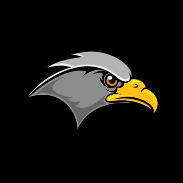 Hawk Head 07116