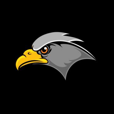 Hawk Head 07117