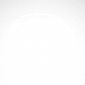 Hawk Head Engrave Style 07150