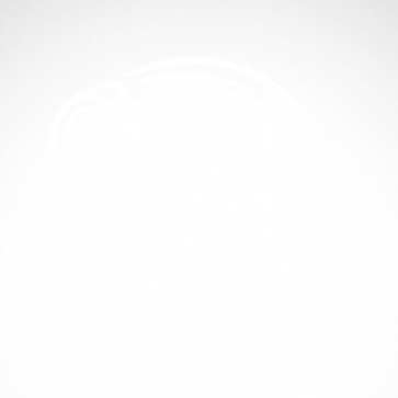 Eagle Head 07156