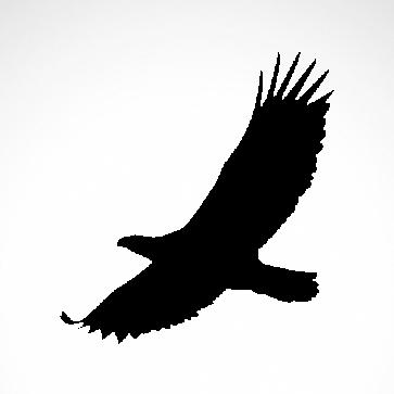 Wild West Eagle 07168