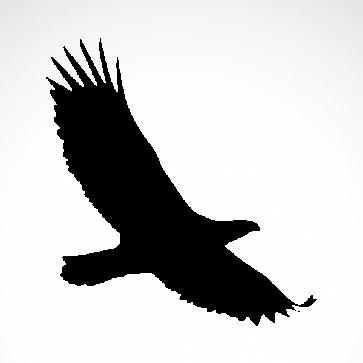 Wild West Eagle 07169
