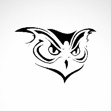 Strigiformes Owl 07184