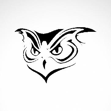 Strigiformes Owl 07185