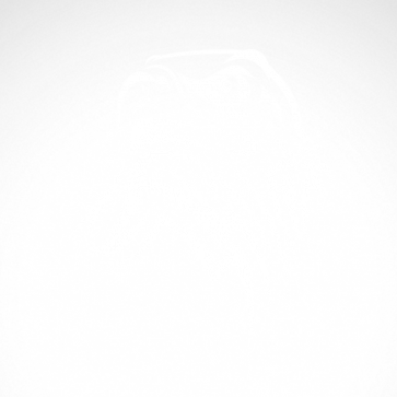 Eagle Head 07192