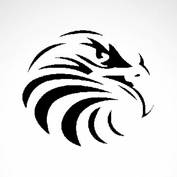 Eagle Hawk Head 07194