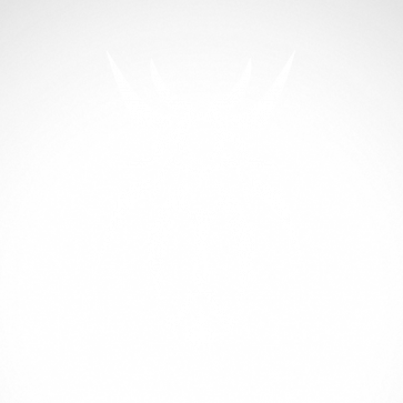 Tribal Design Tatto Style 07498