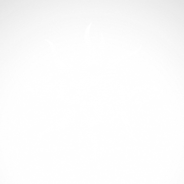 Tribal Tattoo Style 07517